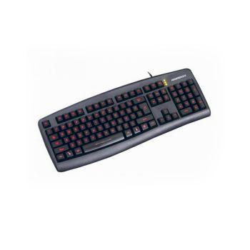 NEWMEN GL100 (Led bàn phím)